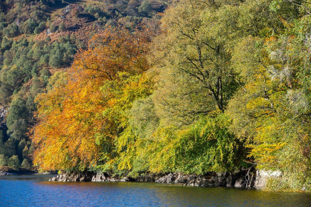 autumn loch katrine